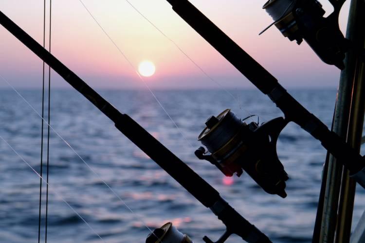 A fishing pole at sunset